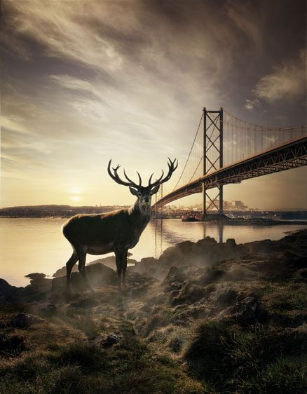 Glenfiddich photographer Dirk Karsten production Continental
